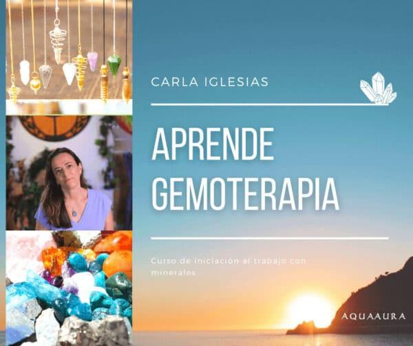 cartel curso básico gemoterapia